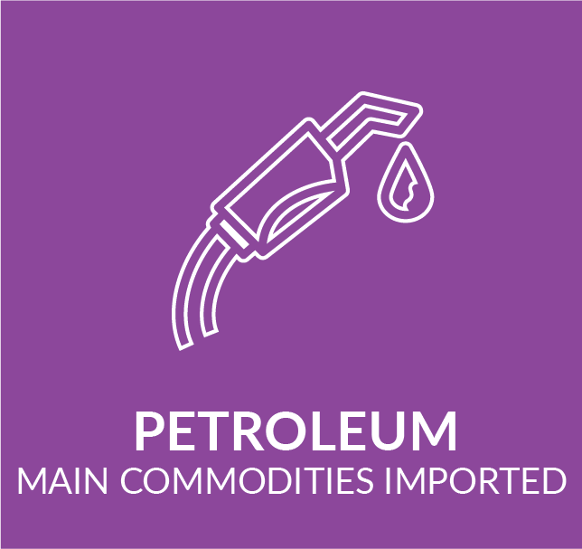 Infographic showing main commodities imported