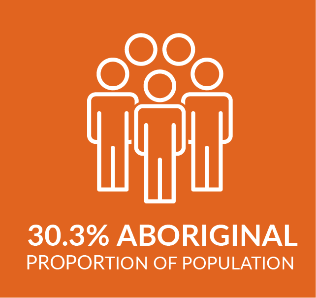infographic showing aboriginal population