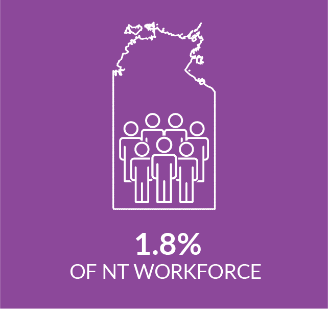 Infographic show percentage of NT workforce