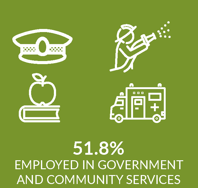 Infographic showing portion employed in public sector